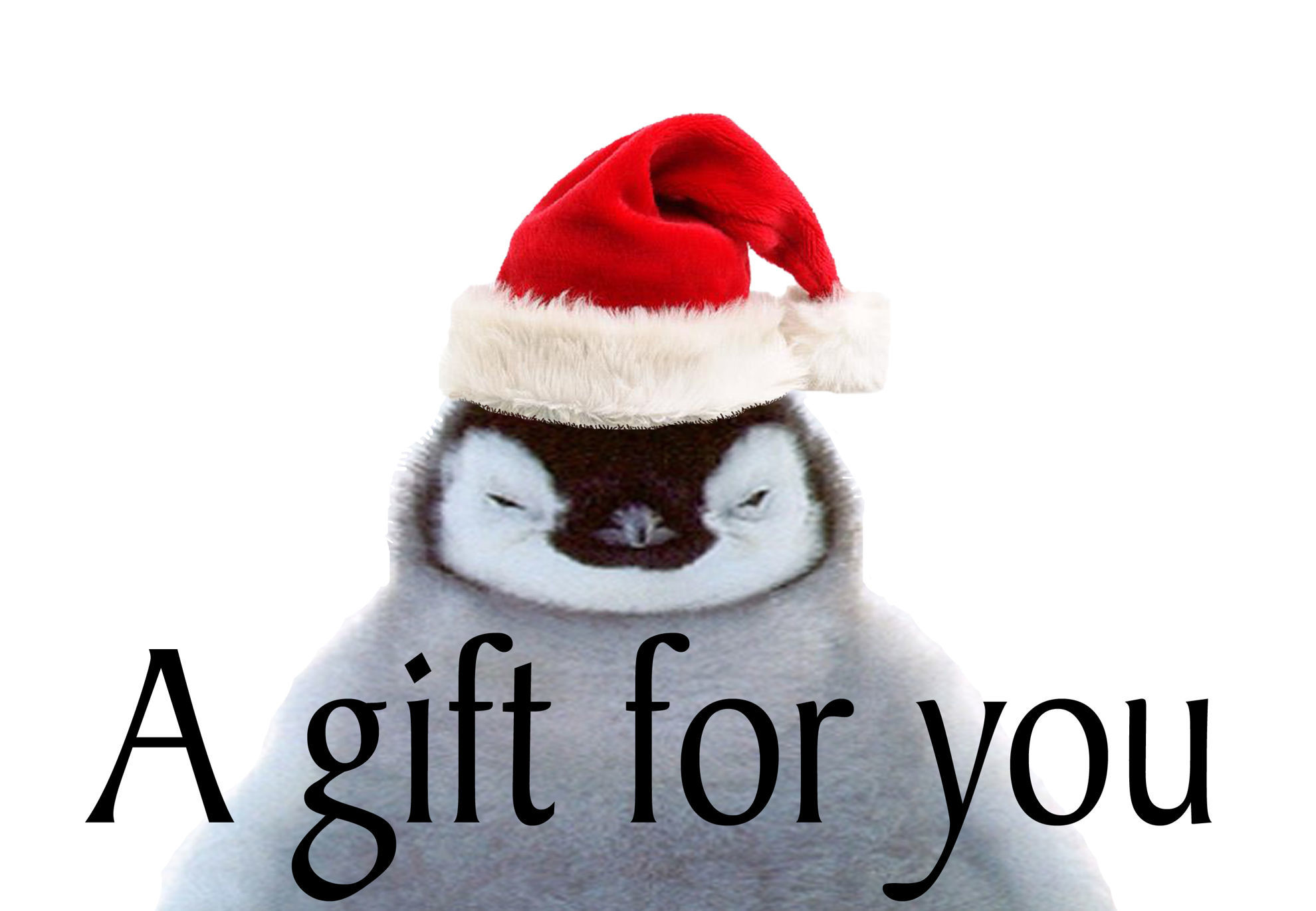 GCI-14 Gift Card Holder (Penguin in Hat)