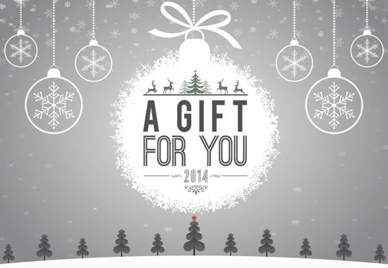 GCI-22 Gift Card Holder (Snow Landscape Gray)